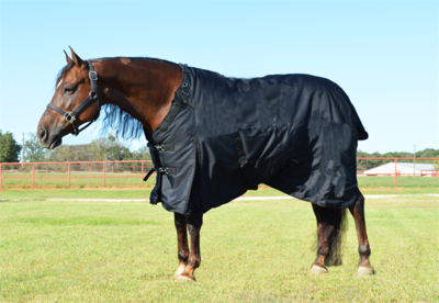 WILD WEST TOUGH TURNOUT WINTER BLANKET