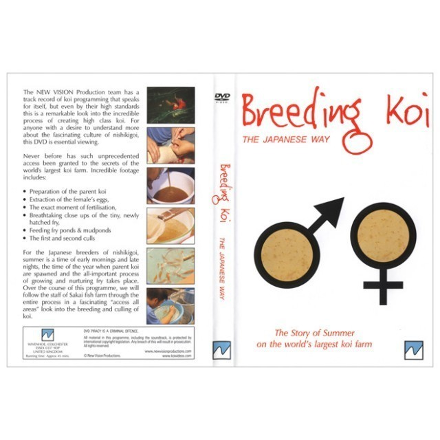 BREEDING KOI THE JAPANESE WAY