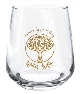 Absorb Water Kefir Glass