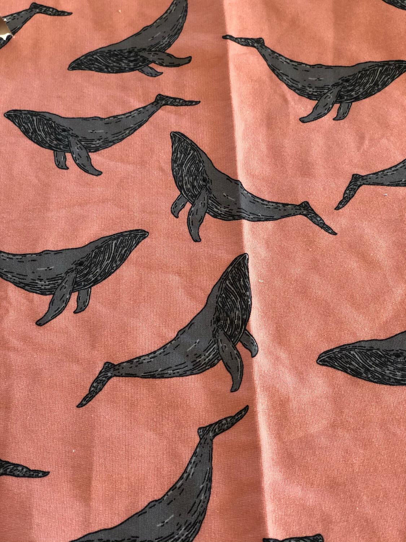 Ready to Go Blush Whale Baby Leg Warmers - grey cuffs