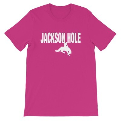 Jackson Hole Wyoming USA - T-Shirt (Multi Colors) The Rockies American Rocky Mountains