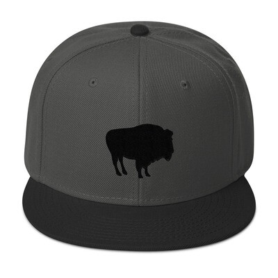 Bison - Snapback Hat (Multi Colors) The Rocky Mountains Canadian American Rockies