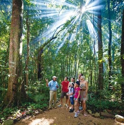 ポートダグラスと世界自然遺産 モスマン渓谷1日・半日ツアー