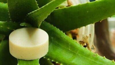 Magizh Aloevera Soap - 100g