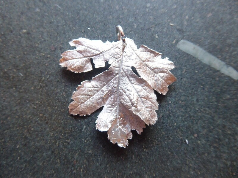D) Med to Large Pure Silver (999) Hawthorn Leaf Pendant - Various Handpicked in September 2020 fromThe Churnet Valley/ Caldon Canal, Staffordshire