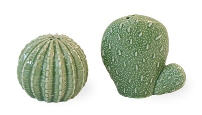 Prickly Cactus Salt & Pepper Shaker Set