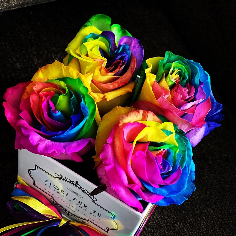 Rainbow Roses- Box of Pride & Joy -