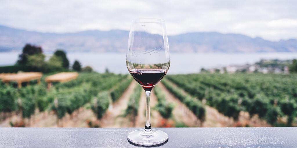 Pacific Northwest Wine Tasting - 9/18/20