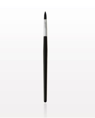 Additional Paint Brushes