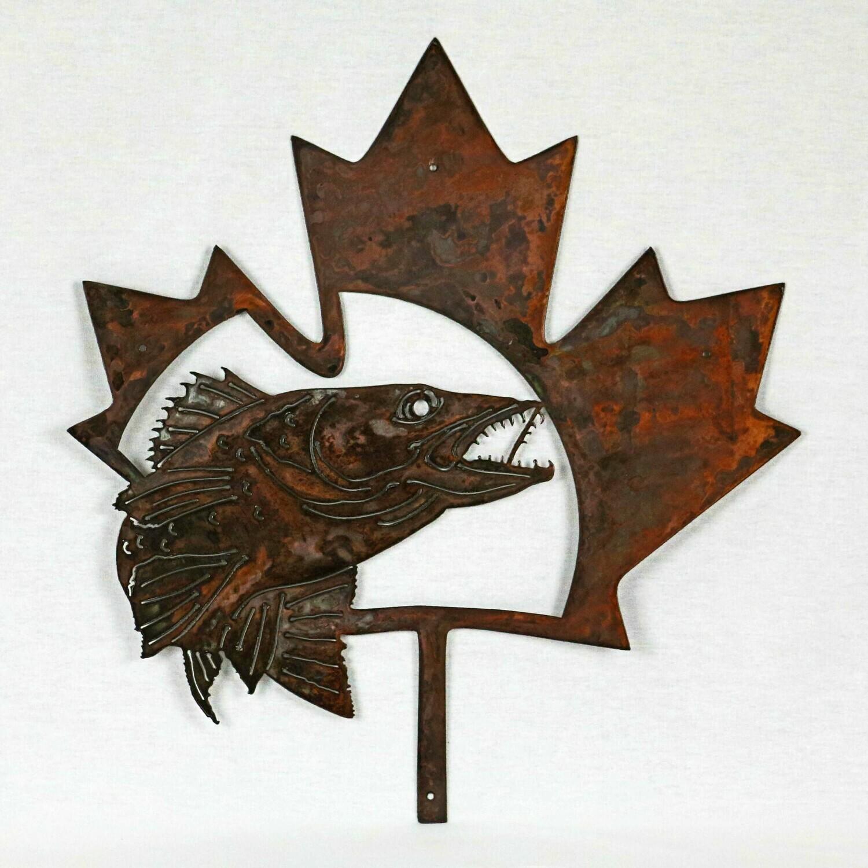 Canadian Maple Leaf Walleye