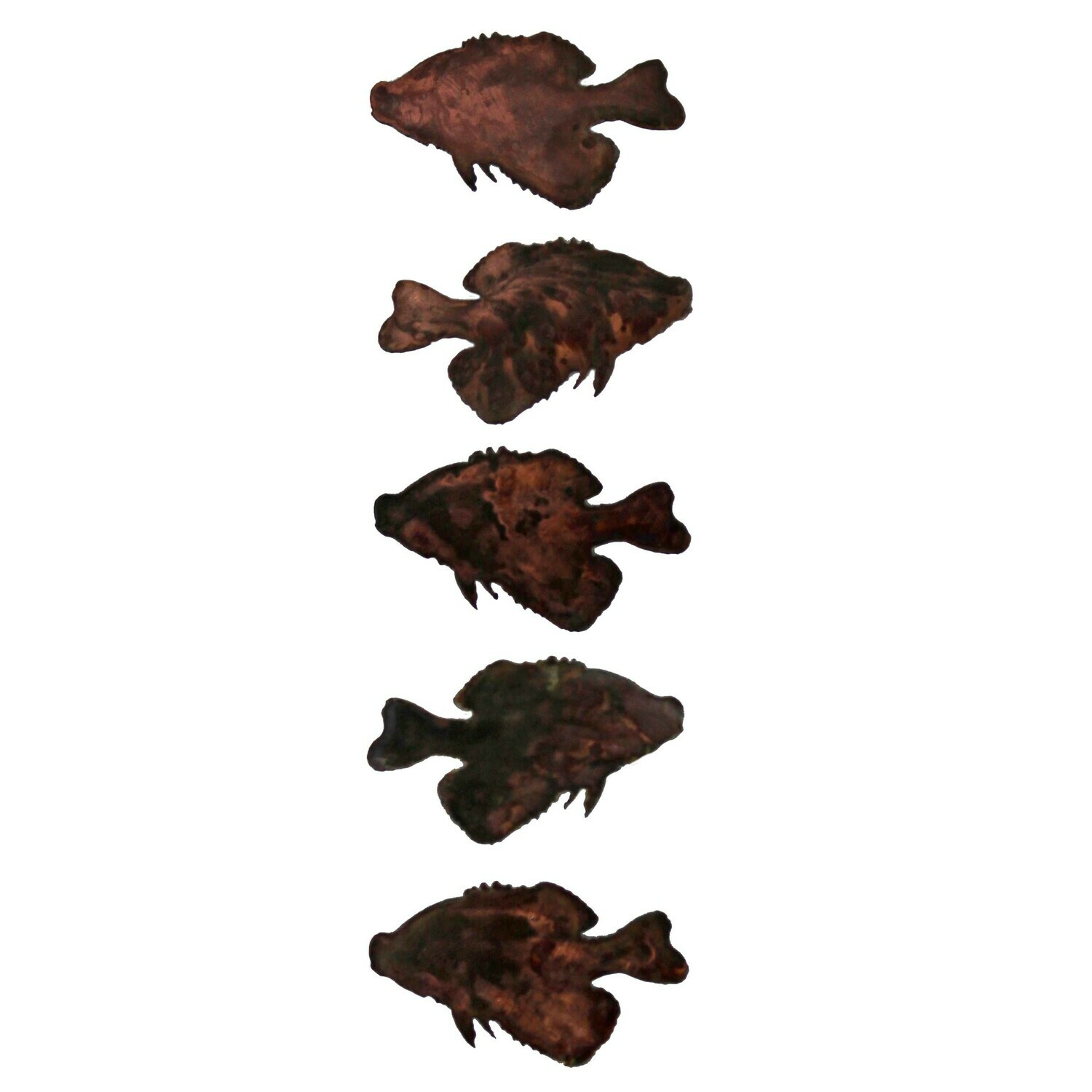 Small Crappie Magnet Set