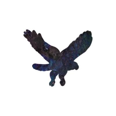 Hawk Magnet