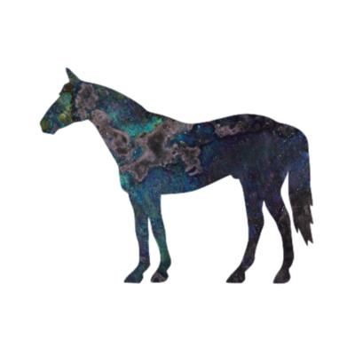 Stallion Magnet