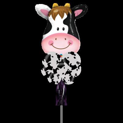 Cow Hello