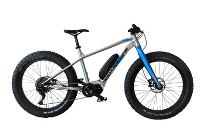 ROCK MACHINE AVALANCHE E50 - eMTB FATBIKE 2020