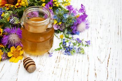 Mazurskie Miody Polish Honey  1.3KG TUBE MULTIFLOWER