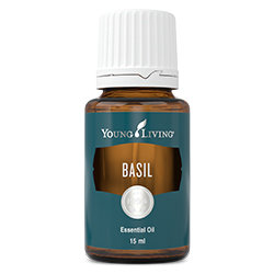 Basil essential oil - 15ml [Wholesale]