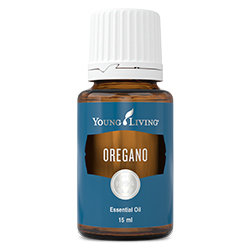 Oregano essential oil - 15ml [Wholesale]