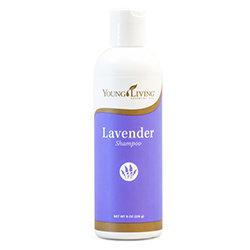 Shampoo - Lavender Volume [Wholesale]