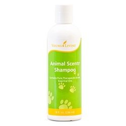 Animal Scents Shampoo [Retail]