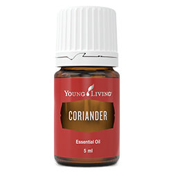 Coriander essential oil - 5 ml [Retail]