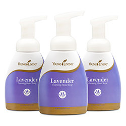 Lavender Foaming Hand Soap 3 pack  [Retail]