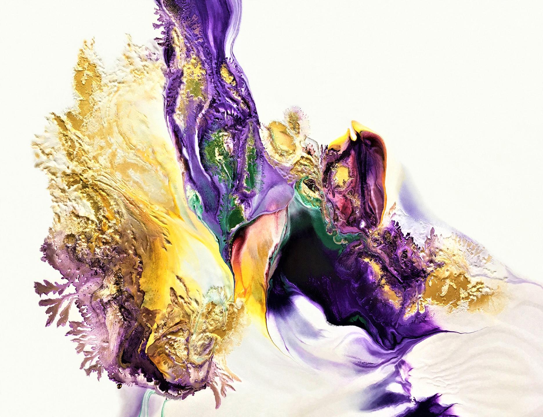 Purple Bird 00013