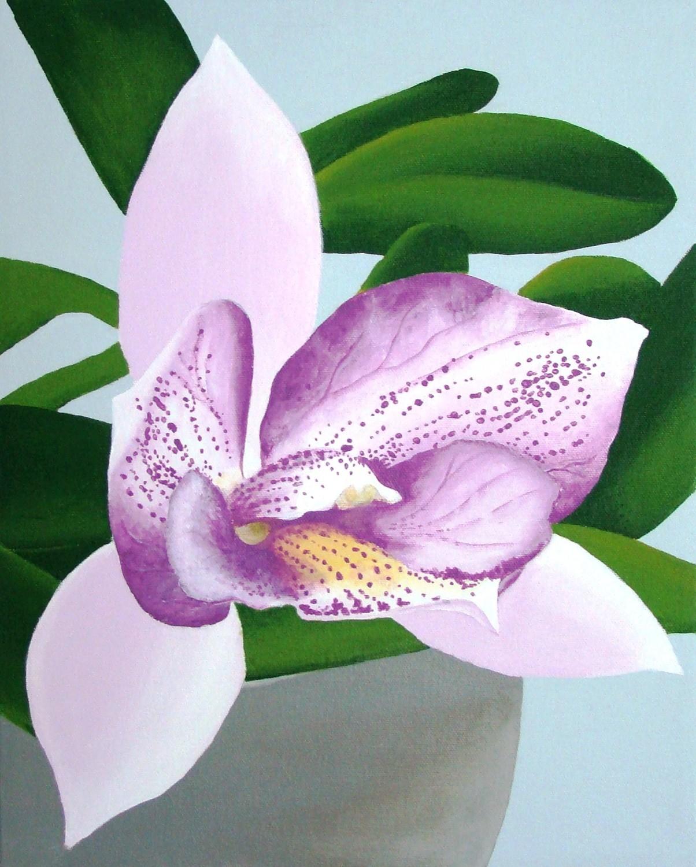 Diacattleya Chantilly Lace 'Twinkle' #2