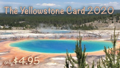 The Yellowstone Card FREE SHIPPING