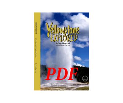 Yellowstone Book (Digital Download)