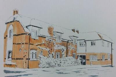 Windsor at Gordon's in the Snow