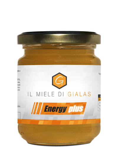Energy Plus 1866