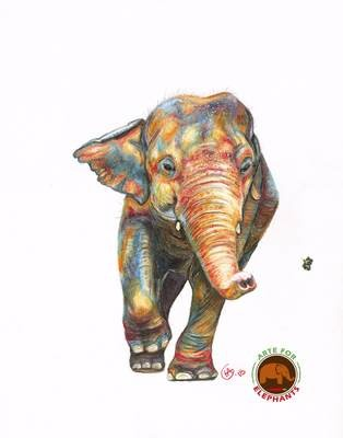 Free Kaavan Large Fine Art Print- Ships in January