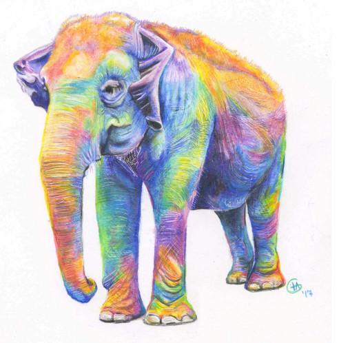 Rainbow Maia Large Fine Art Print