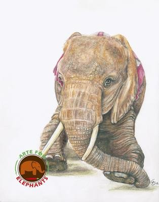 Nosey Before Rescue- Large Fine Art Print