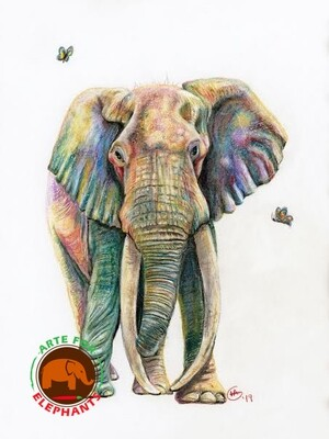 Kamboyo- Last of the Great Tuskers Fine Arte Print- Ships in January