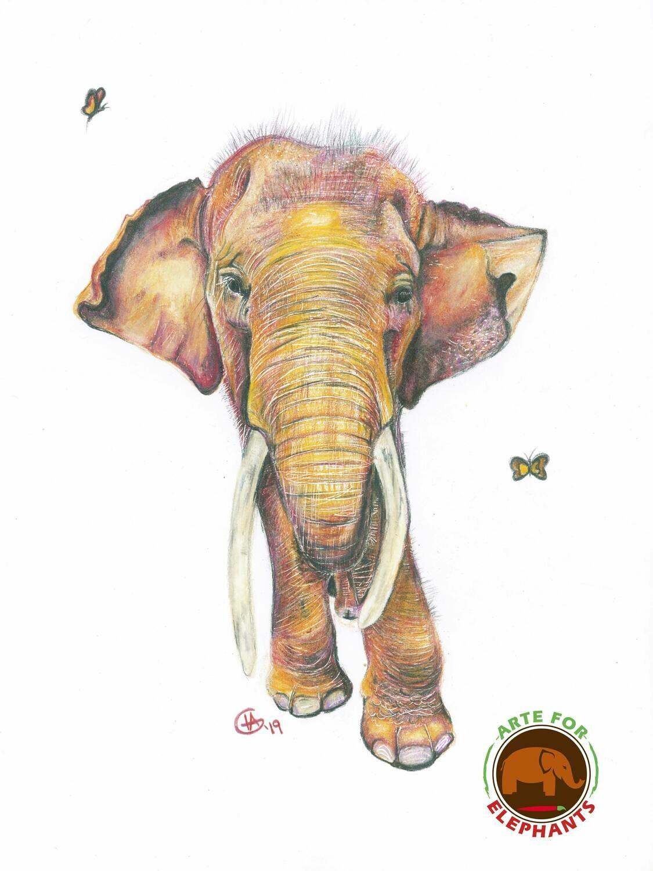 Gluay Hom- In Sunshine Large Fine Art Print-