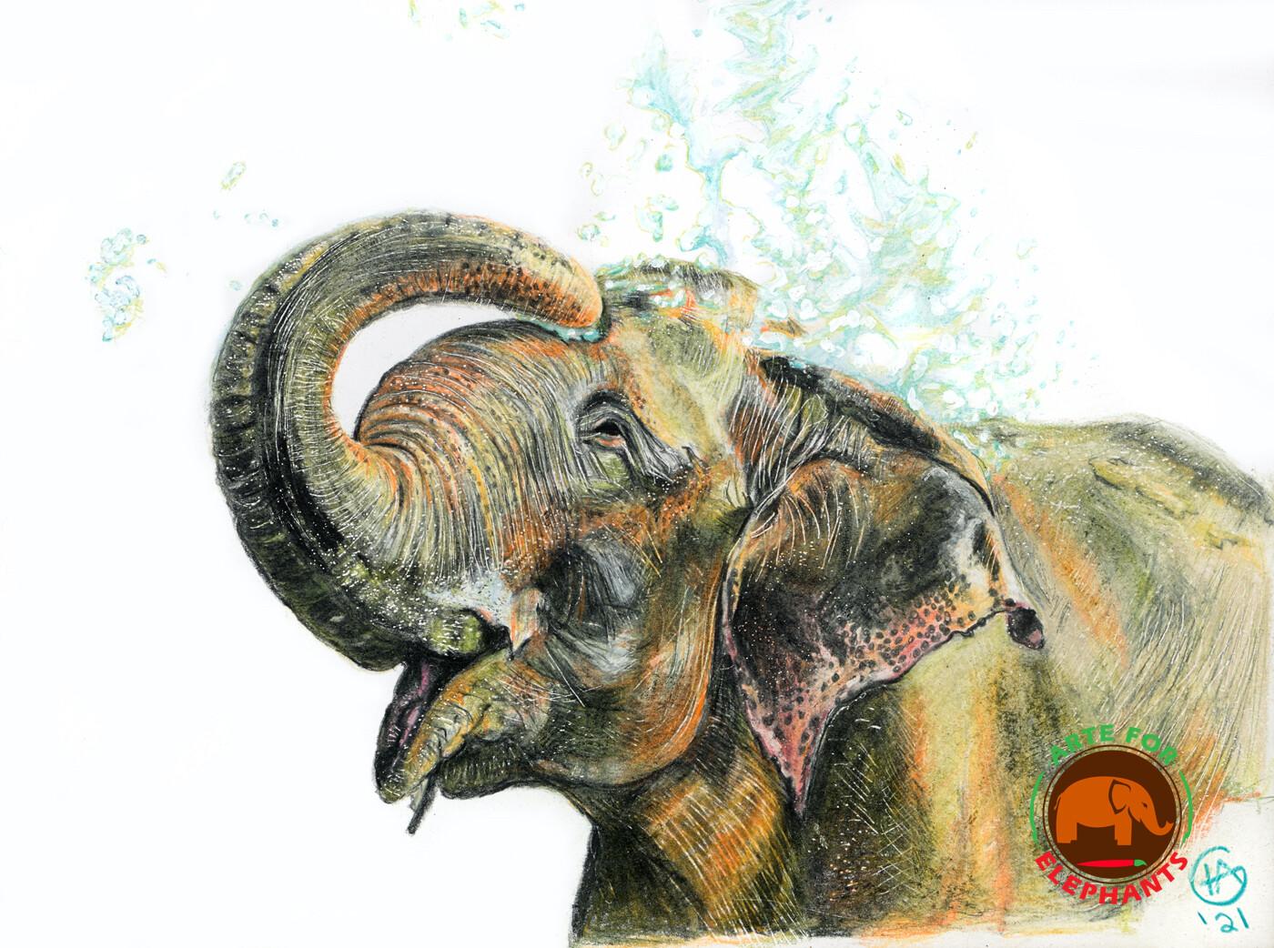 Raju Joy NEW- Limited Edition Print