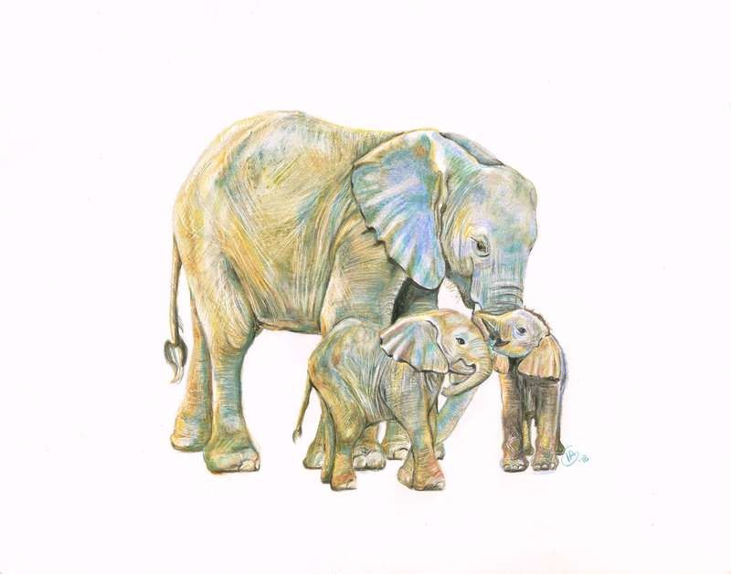 Eloise & Her Twins Large Print-