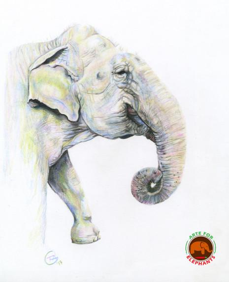 Ramba Elephant in Moonstone Memorial