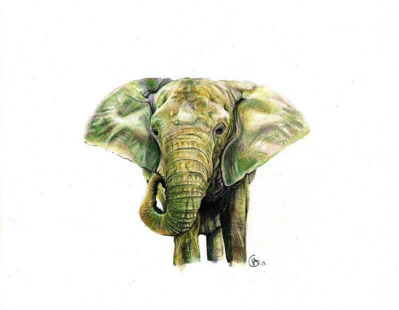 Kenya in Green