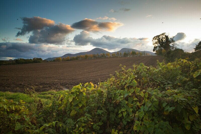 The Mournes County Down
