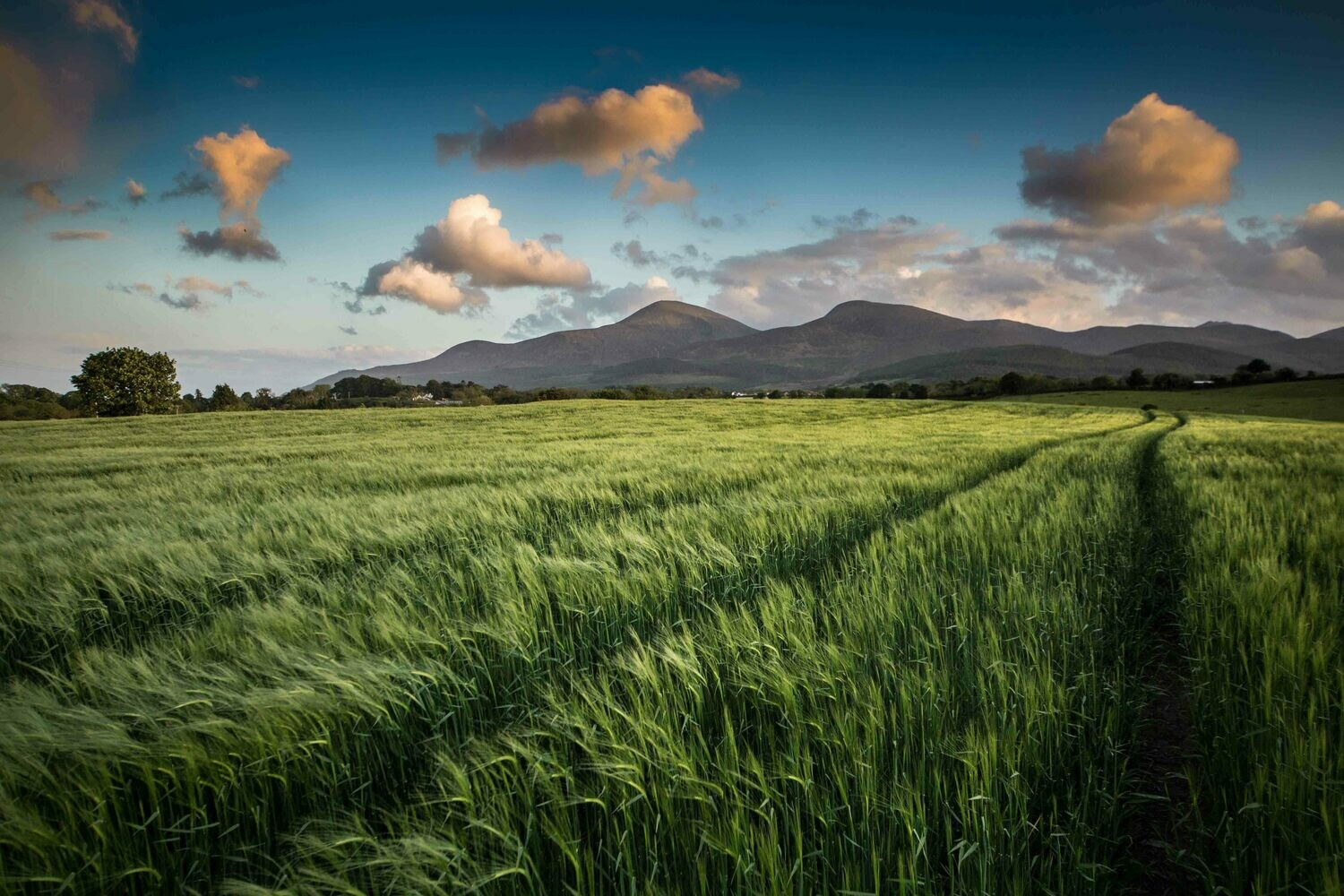 The Mourne Mountains, Maghera, County Down, N.Ireland