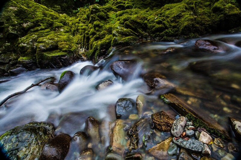 Tollymore Forest River