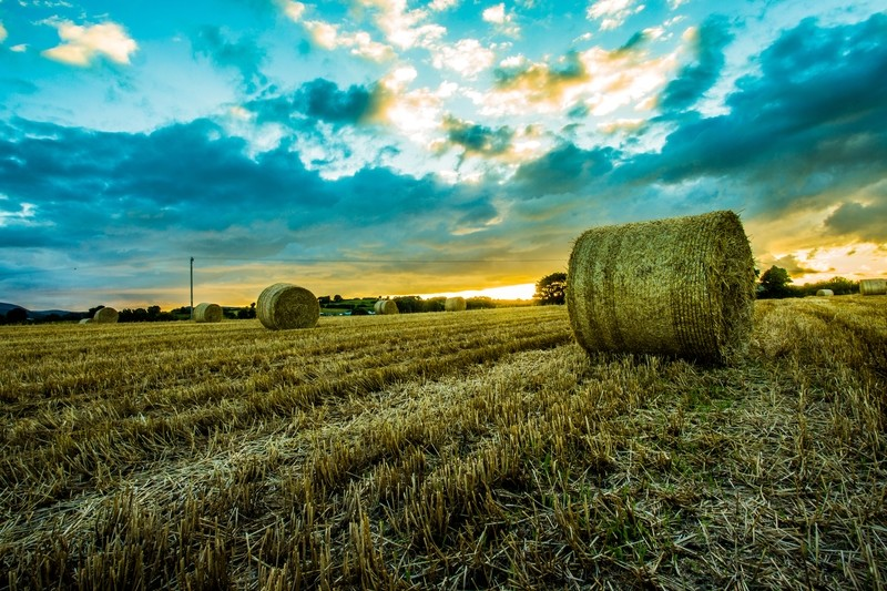 Bails of Straw, Maghera, Co.Down, N.Ireland at Sunset