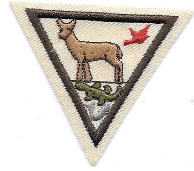 Animals Brown Border 2000-2010