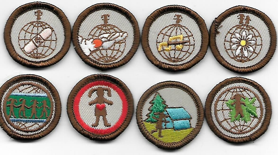 Holly Shores GSC Try Its Companion Badges 1987-?