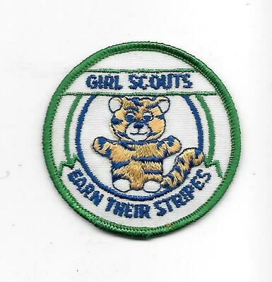 Girl Scouts Earn Their Stripes
