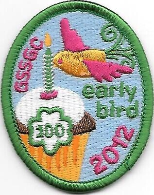 100th Anniversary Patch council unknown