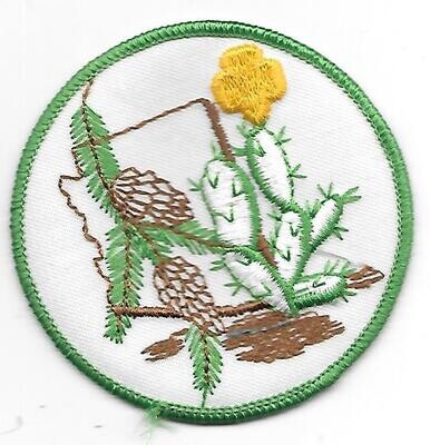 Az Cactus-Pine council patch (Arizona)